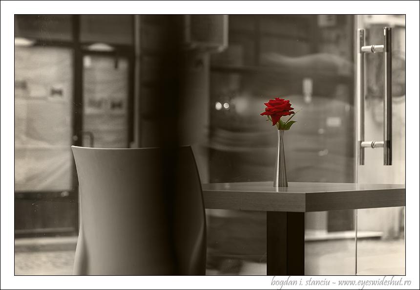 ghost-flower