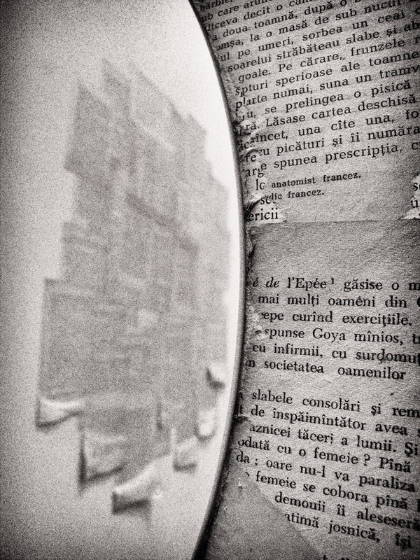 Trandafir, oh, contradicție pură, de a nu fi, sub atâtea pleoape, somnul nimănui Rainer Maria Rilke