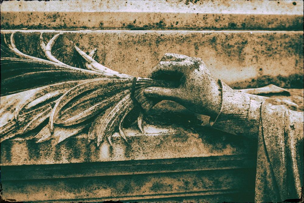 cimitirul_bellu_2016_16_resize